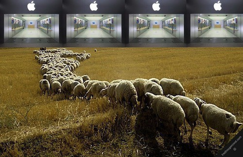 Sheep running towards a badly photoshopped Apple Store